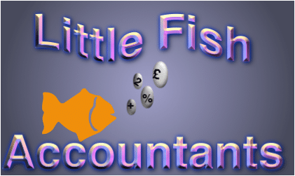 Little Fish Accountants